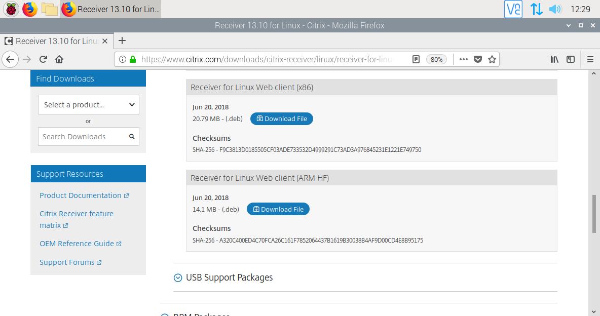 Configurant la Raspberry com a Thinclient amb Raspbian Buster i CITRIX